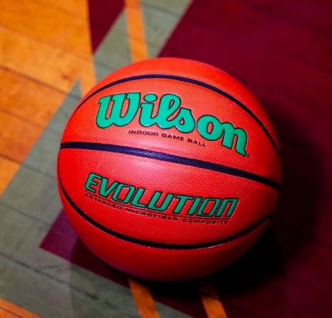 Wilson Evolution - Баскетбольный мяч - 2